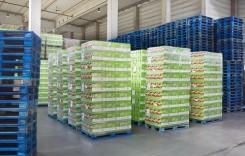 Rezultatele parteneriatului CHEP cu băncile de alimente