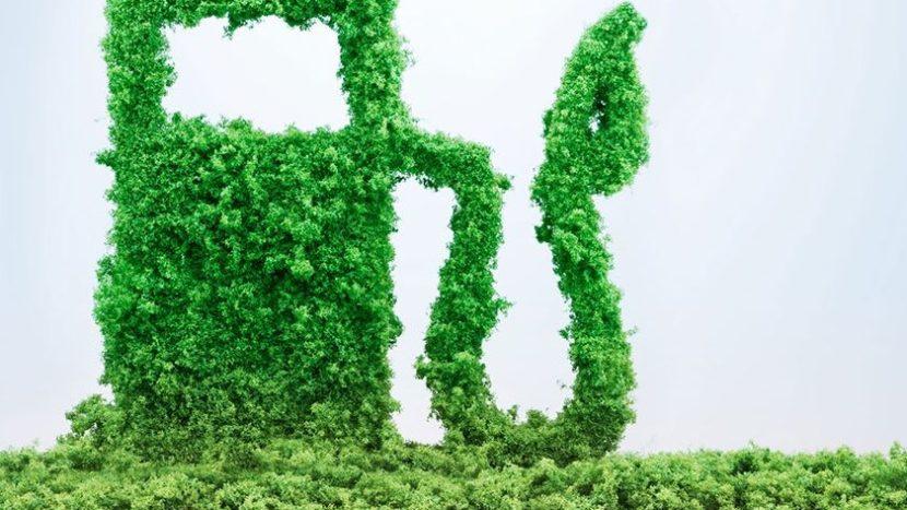 De ce scade potențialul biodieselului pentru camioane?