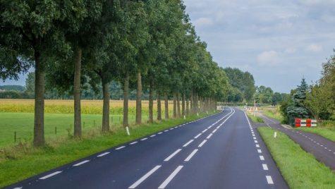 Olanda începe controalele privind detașarea șoferilor