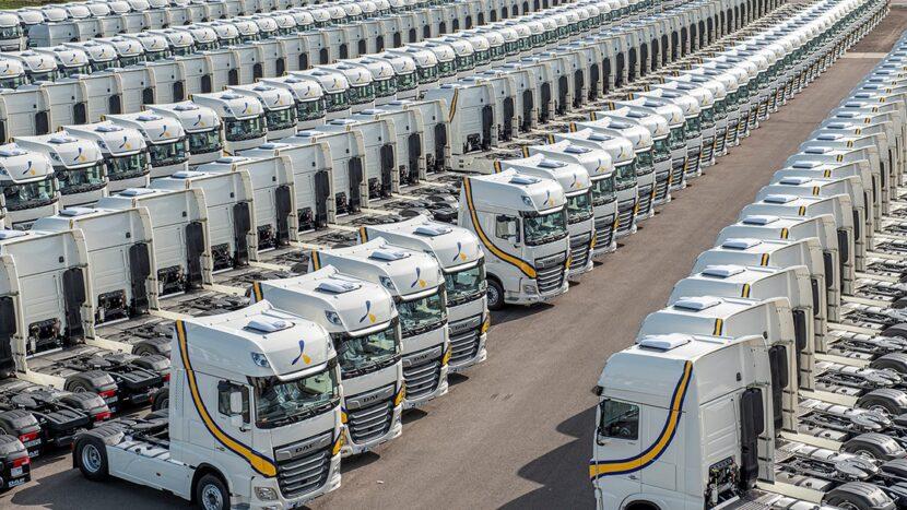 1.300 de camioane DAF XF 480 Super Space Cab pentru Primafrio